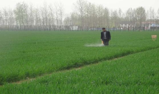 济源市土壤重金属污染农田修复工程